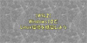 Winddows10 WSL2 install